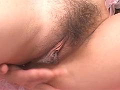 Nasse behaarte Asiafotze